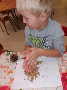 Krmivo pro ptáčky